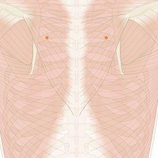 左 胸 した の 痛み 【胸の痛み.com】胸が痛い時に知りたい原因と病気・総合サイト