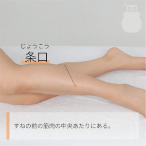 条口(じょうこう)|足の陽明胃経|ST38 Tiaokou