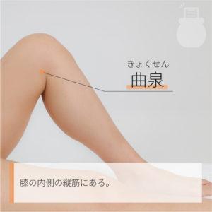 曲泉(きょくせん)|足の厥陰肝経|LR8 Ququann