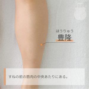 豊隆(ほうりゅう)|足の陽明胃経|ST40 HRY
