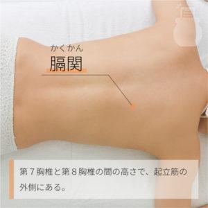 膈関(かくかん)|足の太陽膀胱経|BL46 Geguan