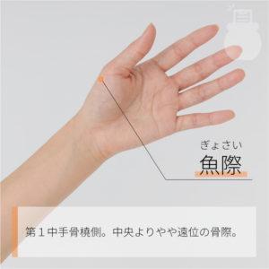 魚際(ぎょさい)|手の太陰肺経|LU10 Yuji