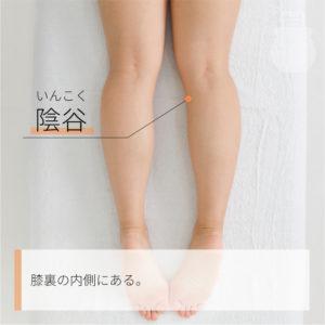 陰谷(いんこく)|足の少陰腎経|KI10 Yingu