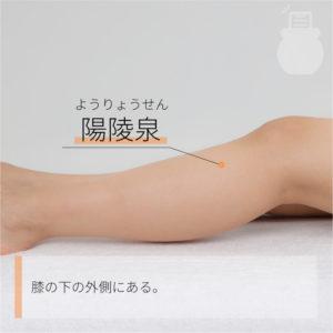 陽陵泉(ようりょうせん)|足の少陽胆経|GB34 Yanglingquan