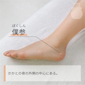 僕参(ぼくしん)|足の少陽胆経|BL61 Pucan