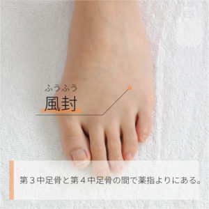 風封(ふうふう)|FUF