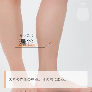 漏谷(ろうこく) 足の太陰脾経 SP7 Lougu