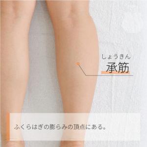 承筋(しょうきん)|足の太陽膀胱経|BL56 Chengjin