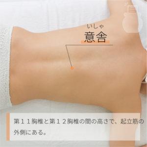 意舎(いしゃ)|足の太陽膀胱経|BL49 Yishe