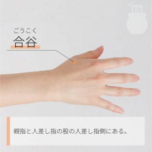 合谷(ごうこく)|手の陽明大腸経|LI4 Hegu