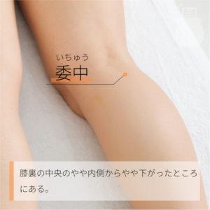 委中(いちゅう)|足の太陽膀胱経|BL40 Weizhong