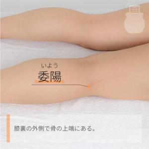 委陽(いよう)|足の太陽膀胱経|BL39 Weiyang