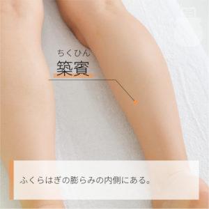 築賓(ちくひん)|足の少陰腎経|K19 Zhubin