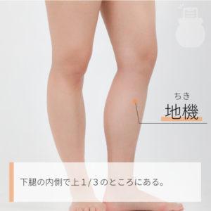 地機(ちき)|足の太陰脾経|SP8 Diji