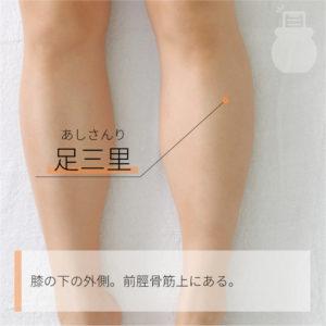 足三里(あしさんり)|足の陽明胃経|ST36 Zusanli