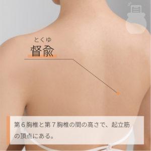 督兪(とくゆ)|足の太陽膀胱経|BL16 Dushu