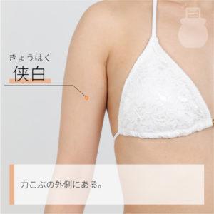 侠白(きょうはく)|手の太陰肺経|LU4 Xiabai