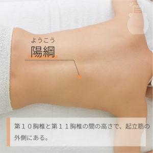 陽綱(ようこう)|足の太陽膀胱経|BL48 Yanggang