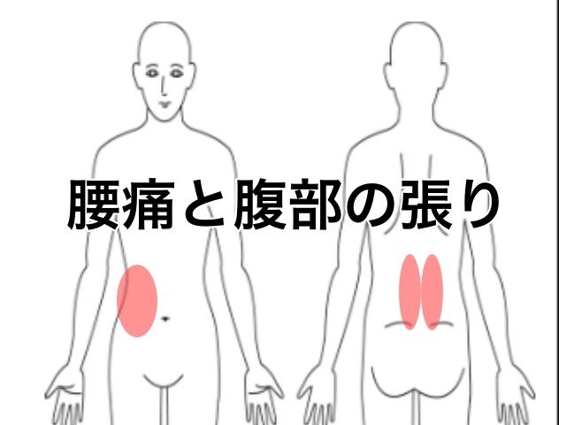 腰痛と腹部の張り